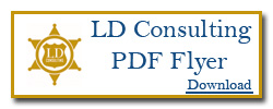 LD Consulting Flyer