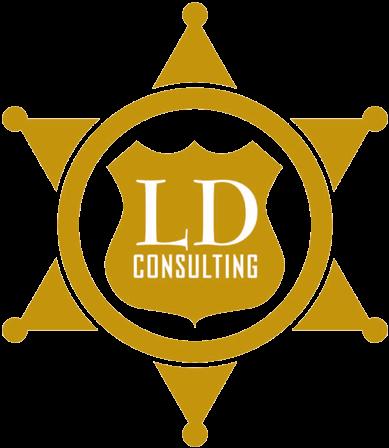 LD Consulting LLC